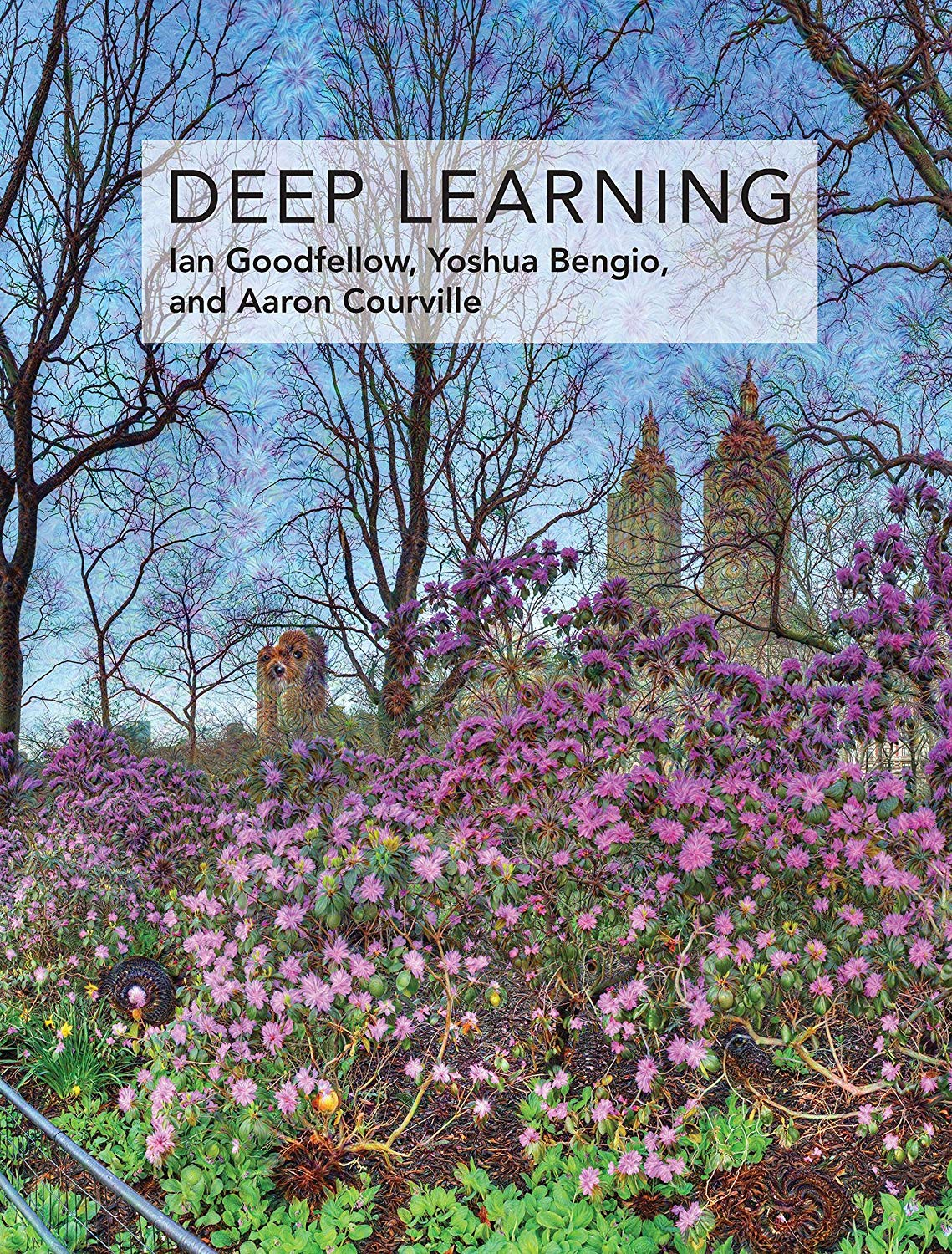 Deep Learning (Adaptive Computation & Machine Learning Series)