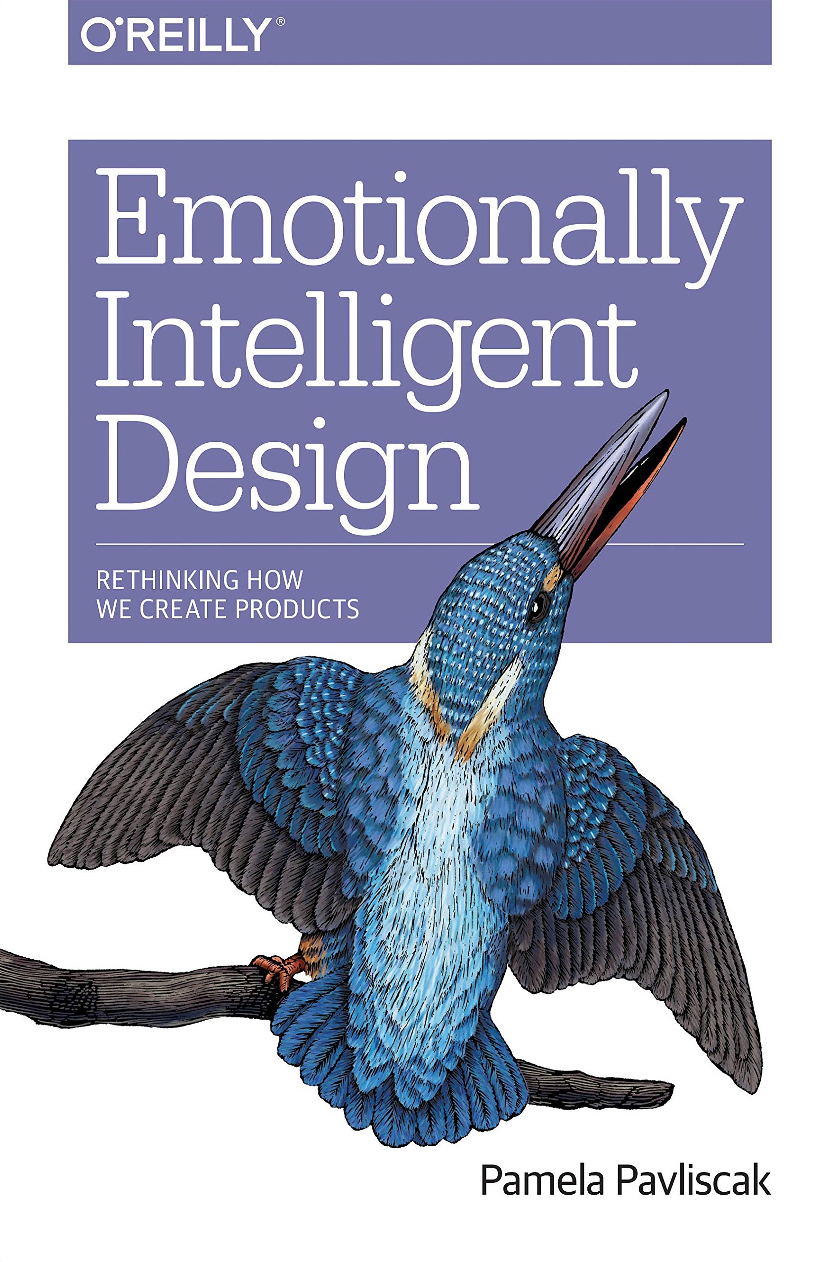 Emotionally Intelligent Design Rethinking How We Create Products 1st Edition