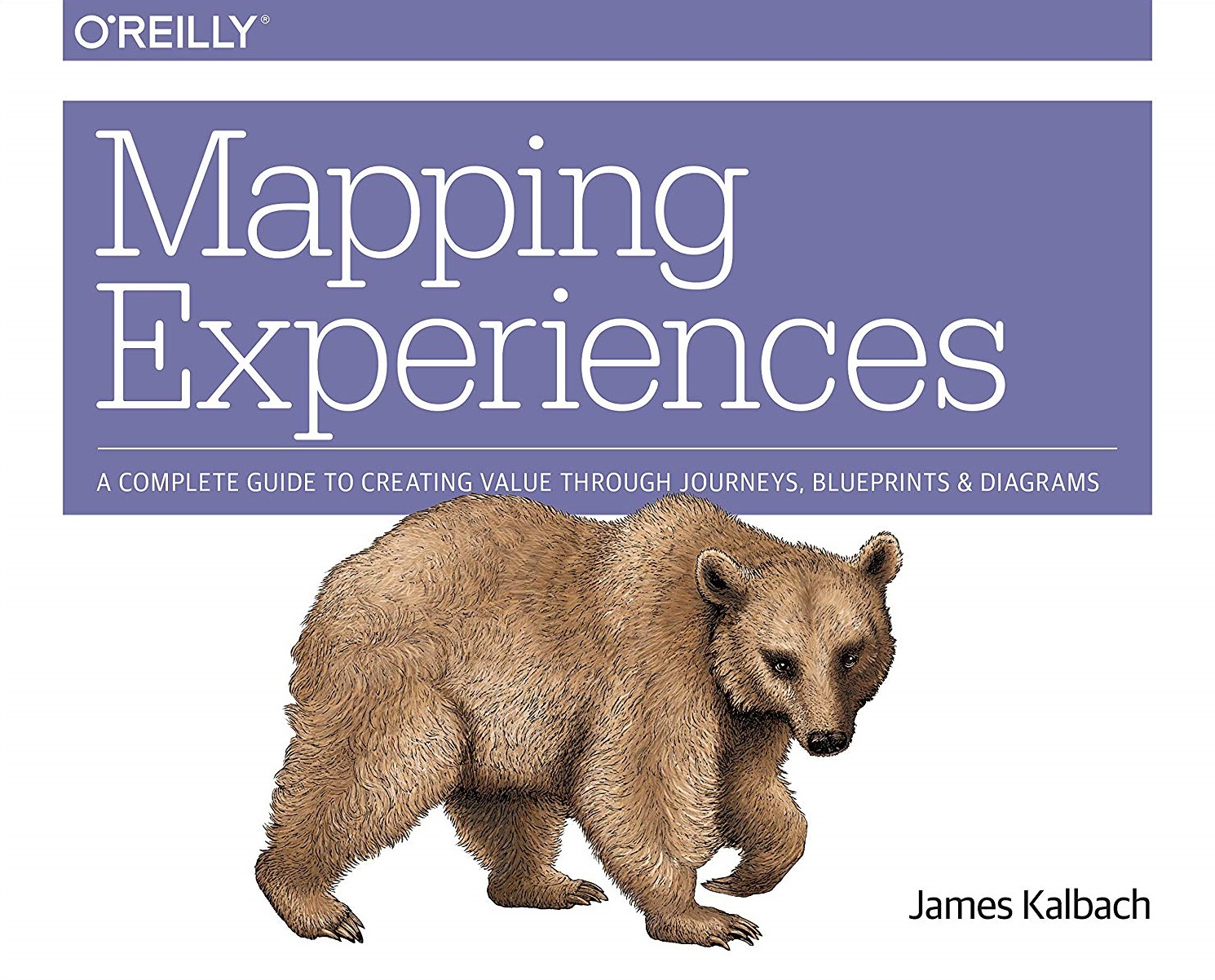 Mapping Experiences A Complete Guide to Creating Value through Journeys, Blueprints, and Diagrams 1st Edition