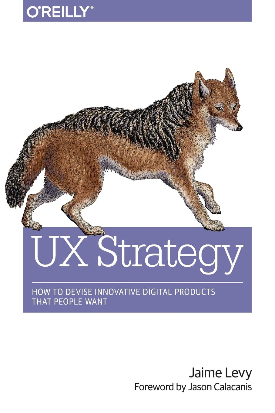 UX Strategy How to Devise Innovative Digital Products that People Want 1st Edition