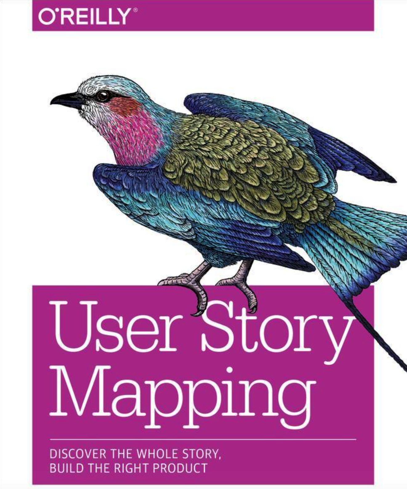 User Story Mapping Discover the Whole Story, Build the Right Product 1st Edition